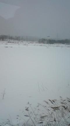 北海道は雪景色
